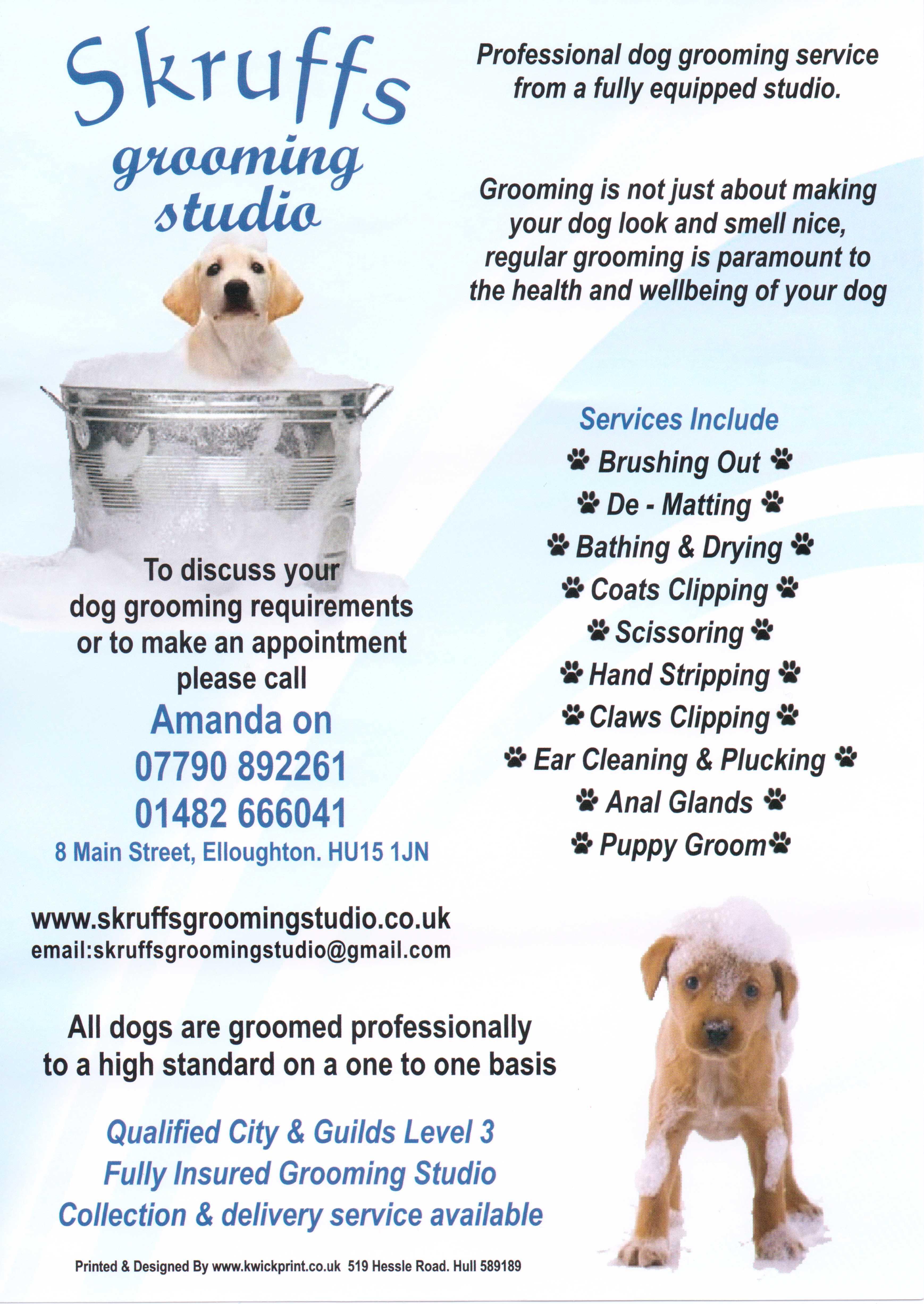 Skruffs grooming studio for 560 salon grand junction